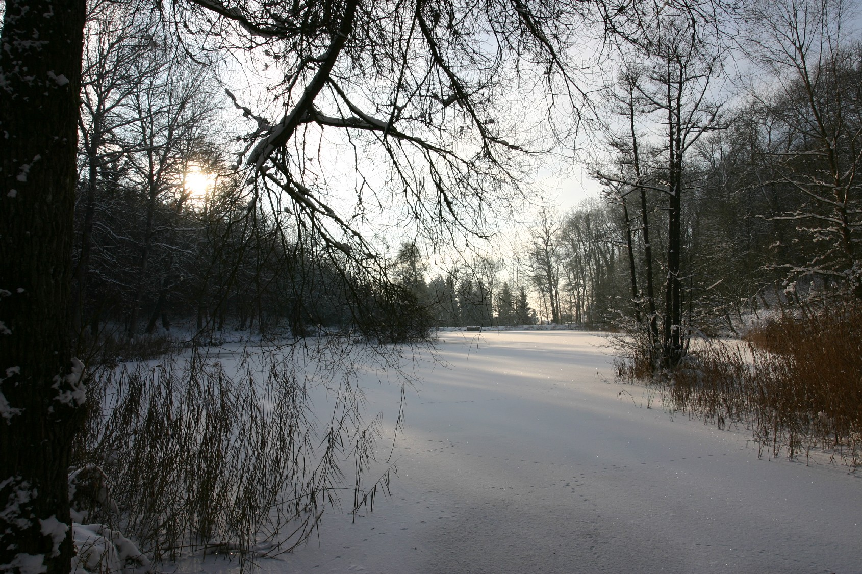 etang_hiver_fabiani
