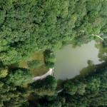 L'étang de Merrey