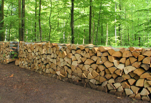 Cession de bois 2016 – Inscription en mairie